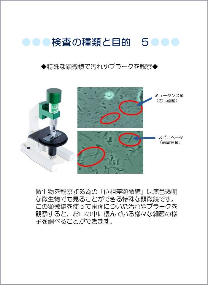 顕微鏡による細菌検査